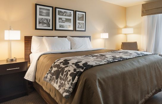 Zimmer Sleep Inn & Suites Carlsbad