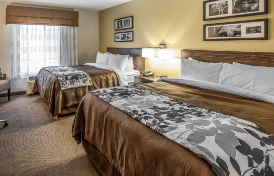 Room Sleep Inn & Suites Jasper