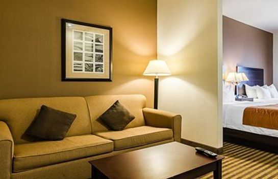Suite Comfort Inn & Suites Lawrence - University Area