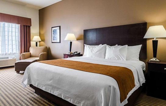 Chambre Comfort Inn and Suites Lawrence - Univer
