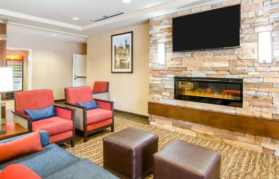 Hol hotelowy Comfort Inn and Suites Lynchburg Airport