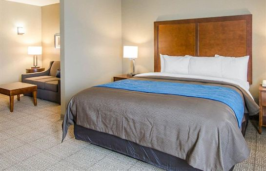 Suite Comfort Inn and Suites Lynchburg Airport
