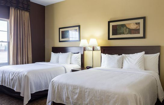 Chambre MainStay Suites Minot