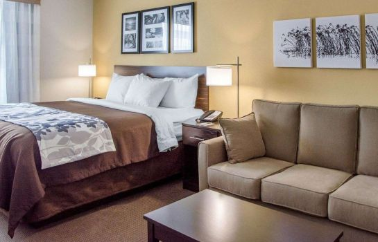Suite Sleep Inn & Suites Parkersburg-Marietta