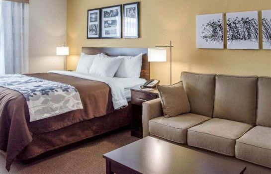 Suite Sleep Inn and Suites Parkersburg-Mariett
