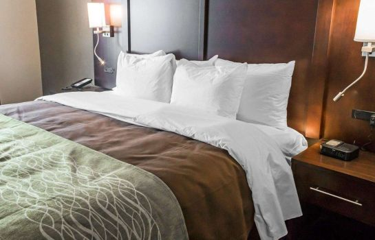 Suite Comfort Inn and Suites Pharr