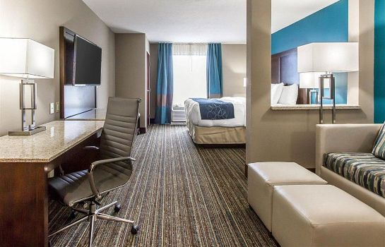 Suite Comfort Suites Las Cruces I - 25 North