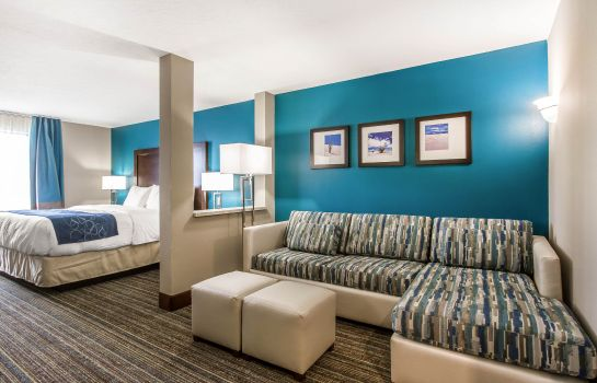 Camera Comfort Suites Las Cruces I - 25 North