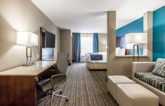 Room Comfort Suites Las Cruces I - 25 North