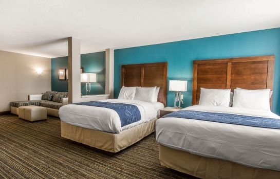 Kamers Comfort Suites Las Cruces I - 25 North