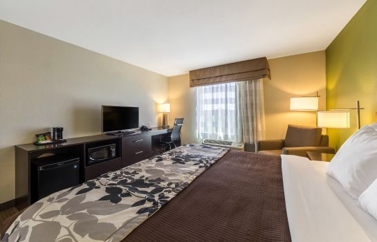 Chambre Sleep Inn & Suites Jourdanton - Pleasanton