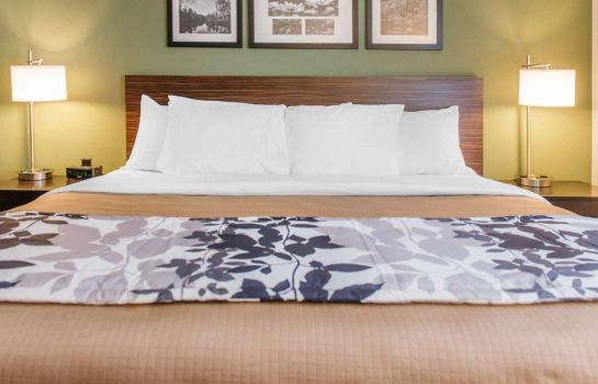 Suite Sleep Inn & Suites Defuniak Springs - Crestview