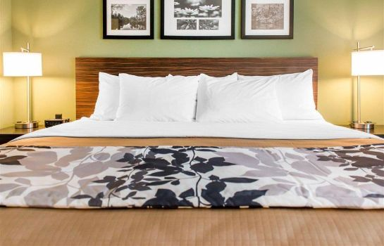 Zimmer Sleep Inn and Suites Defuniak Springs -