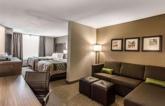 Suite Comfort Inn and Suites Snyder