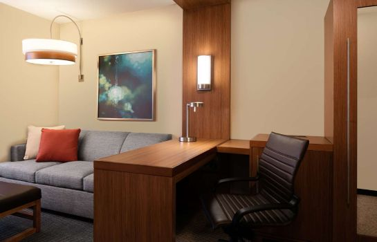Habitación Hyatt Place Kansas City/Lenexa City Cntr