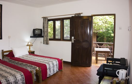 Double room (superior) Afia Beach