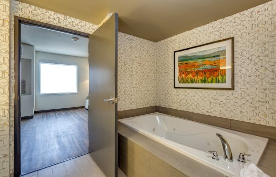 Suite Holiday Inn & Suites BELLINGHAM