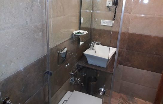 Bathroom Bridge View Regency