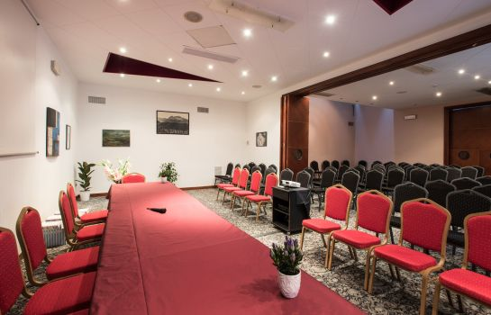 Convention hall Centrale Hotel