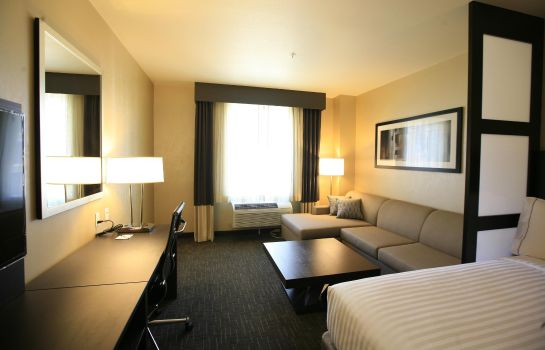 Habitación Holiday Inn Express & Suites ANAHEIM RESORT AREA