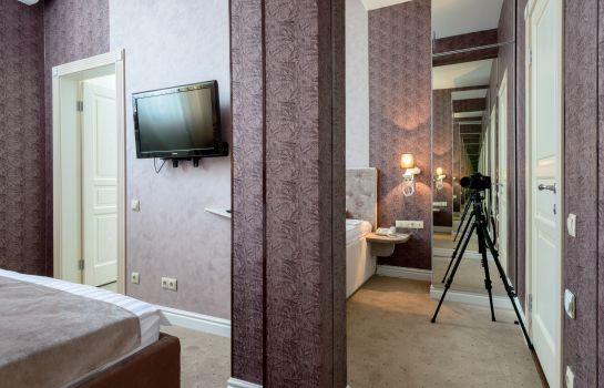 Pokój dwuosobowy (standard) Silver Horse Boutique Hotel