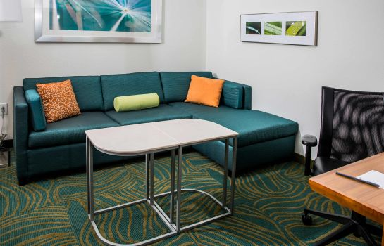 Zimmer SpringHill Suites Charleston Mount Pleasant