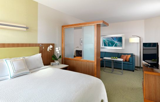 Habitación SpringHill Suites Charleston Mount Pleasant