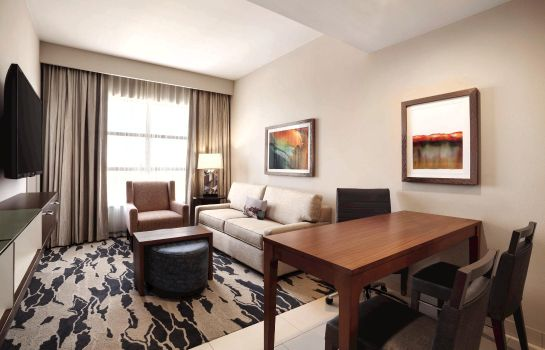 Suite Embassy Suites by Hilton McAllen Convention Center