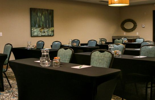 Sala de reuniones Holiday Inn & Suites DENVER TECH CENTER-CENTENNIAL
