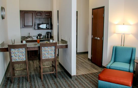 Info Holiday Inn & Suites DENVER TECH CENTER-CENTENNIAL