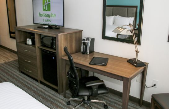 Zimmer Holiday Inn & Suites DENVER TECH CENTER-CENTENNIAL