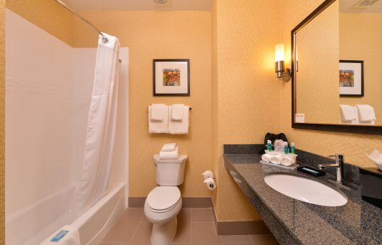 Kamers Holiday Inn Express & Suites BAKERSFIELD AIRPORT