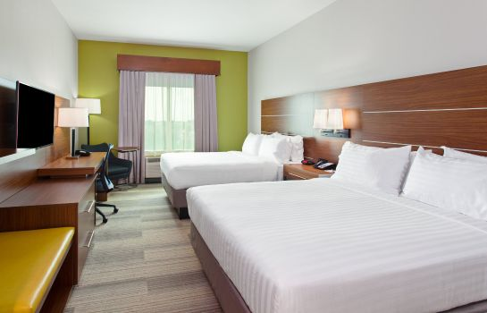 Room Holiday Inn Express & Suites HOUSTON S - MEDICAL CTR AREA