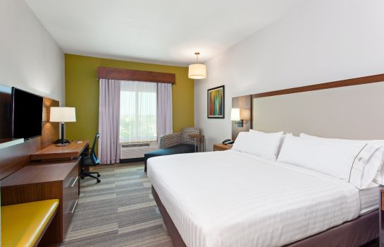 Chambre Holiday Inn Express & Suites HOUSTON S - MEDICAL CTR AREA