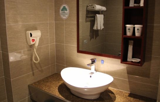Cuarto de baño GreenTree Inn Tongzhou Shiji Avenue(Domestic only)