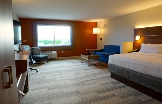 Suite Holiday Inn Express & Suites OMAHA - MILLARD AREA