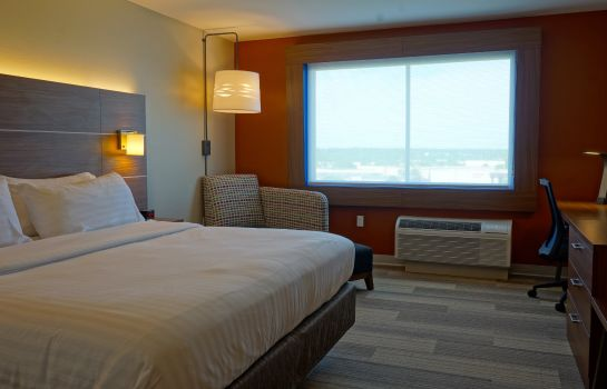 Chambre Holiday Inn Express & Suites OMAHA - MILLARD AREA