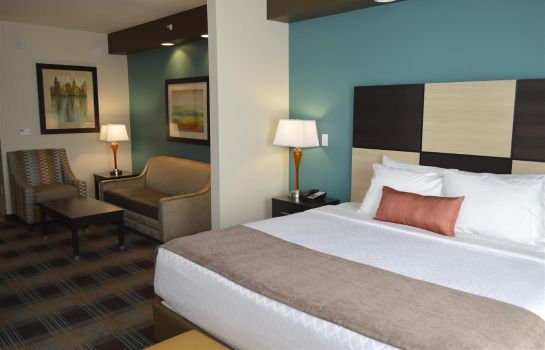 Suite Best Western Plus Atrium Inn & Suites