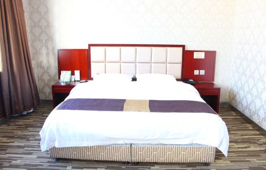 Single room (standard) Wan Hao Hotel Domestic only