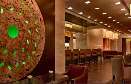 Hotel-Bar Hyatt Regency Pune