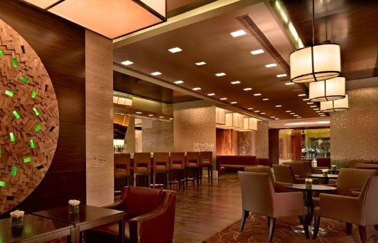 Hotel bar Hyatt Regency Pune
