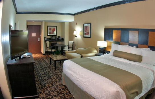 Suite BEST WESTERN PLUS AIRPORT INN