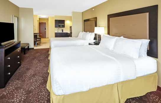 Habitación Holiday Inn Express & Suites SANDUSKY