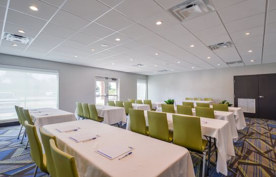 Conference room Holiday Inn Express DONALDSONVILLE