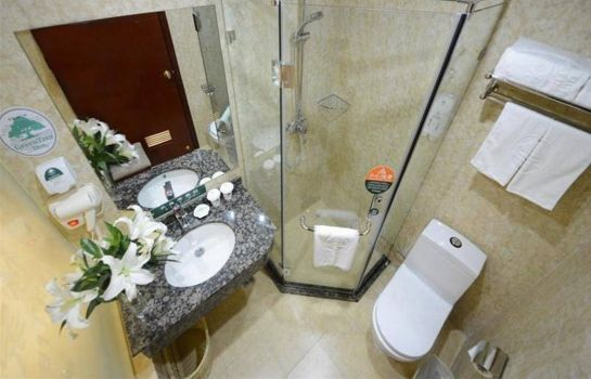 Badezimmer GreenTree Inn Hechang Road (Domestic only)