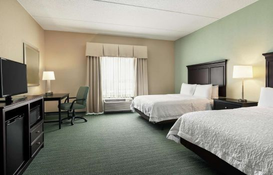 Pokój Hampton Inn - Suites Mount Joy-Lancaster West PA