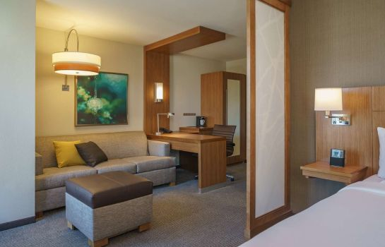 Suite Hyatt Place Houston/Galleria