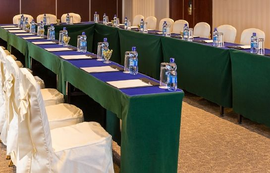 Conference room DAMU HOTEL ADDIS ABABA
