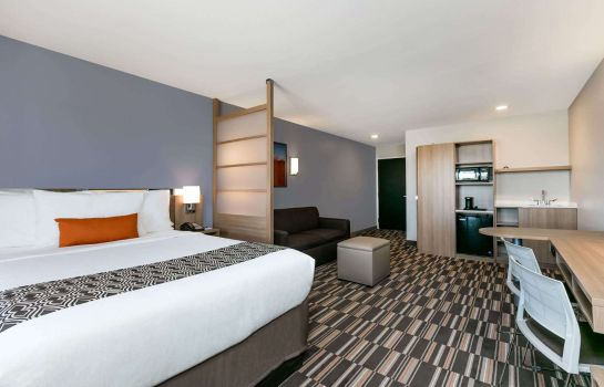 Suite Microtel Inn and Suites by Wyndham Monahans