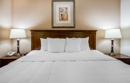 Room Quality Inn & Suites Dawsonville